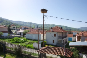 Prespa highest storks nest in Europe